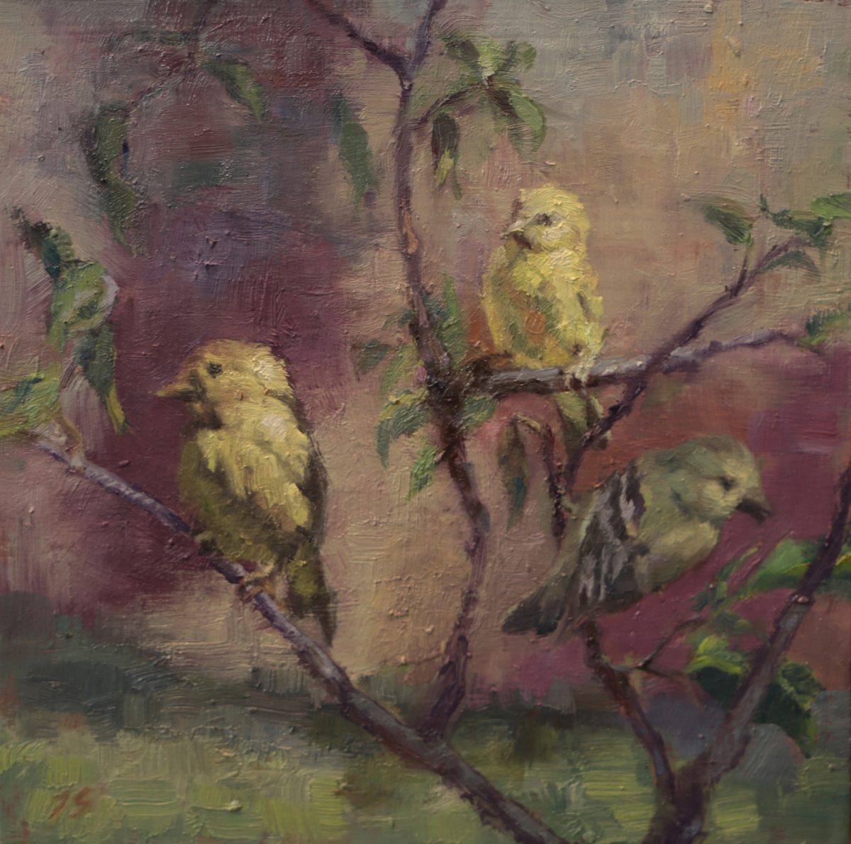 The Three Finches