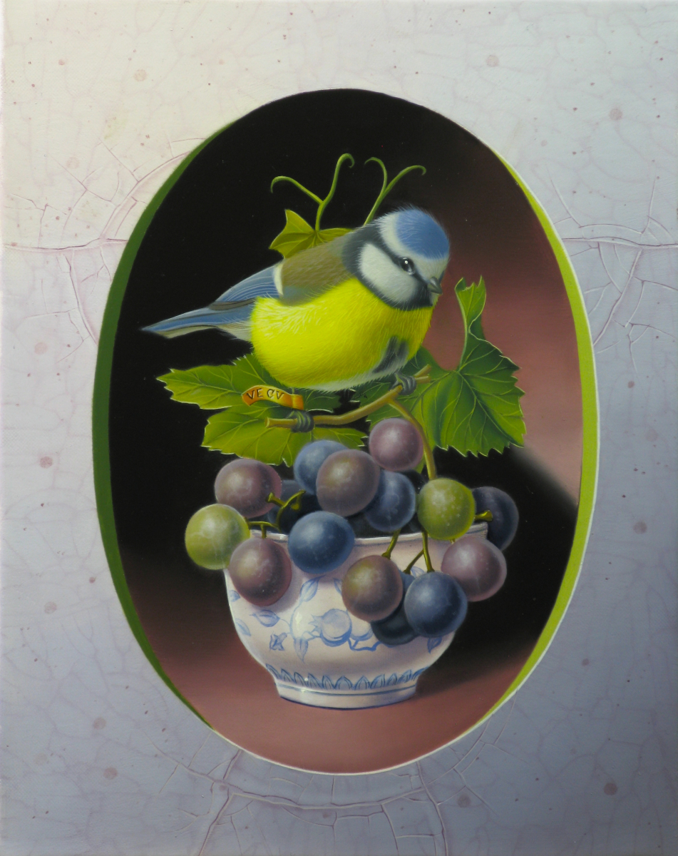 Eurasian Blue Tit with Grapes