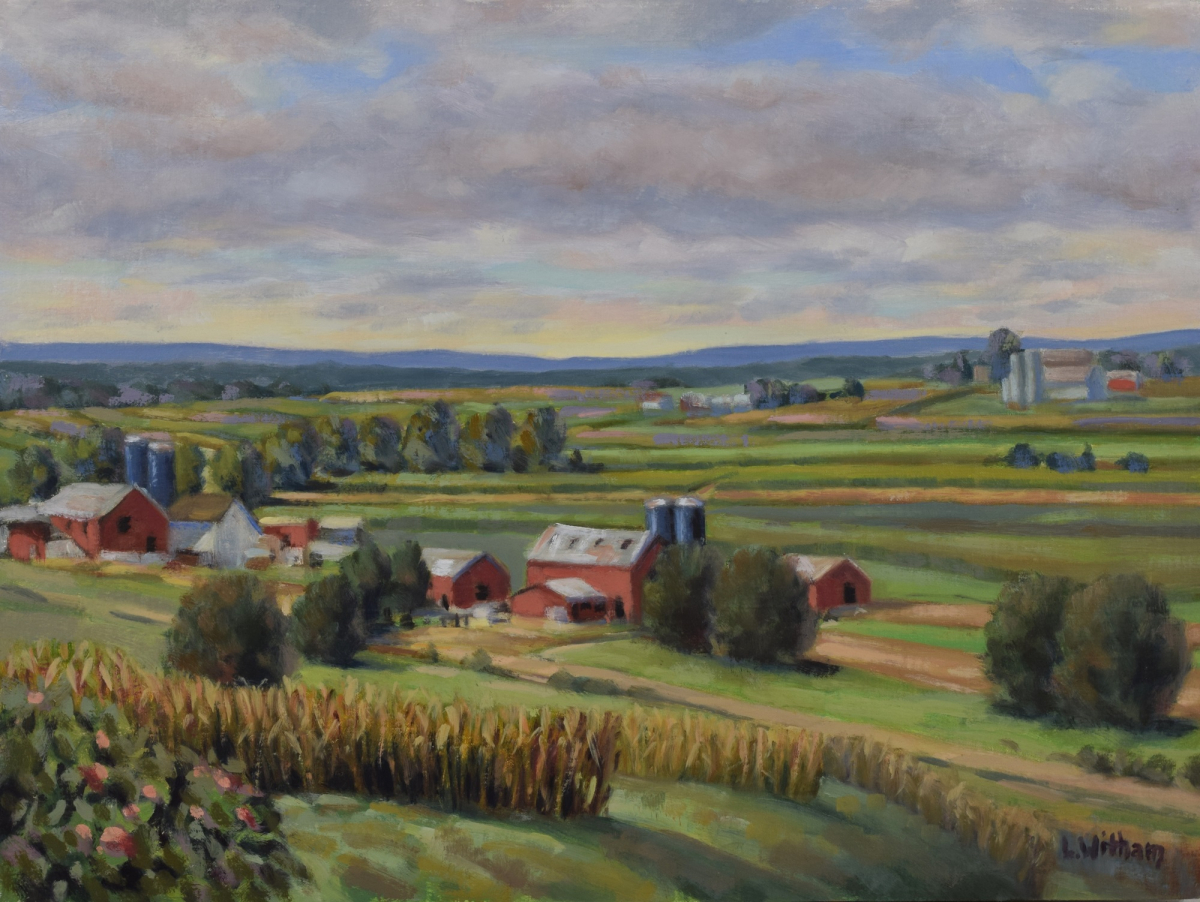 View of Amish Farms